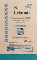 SchwimmwettbUrk-2017-04-06